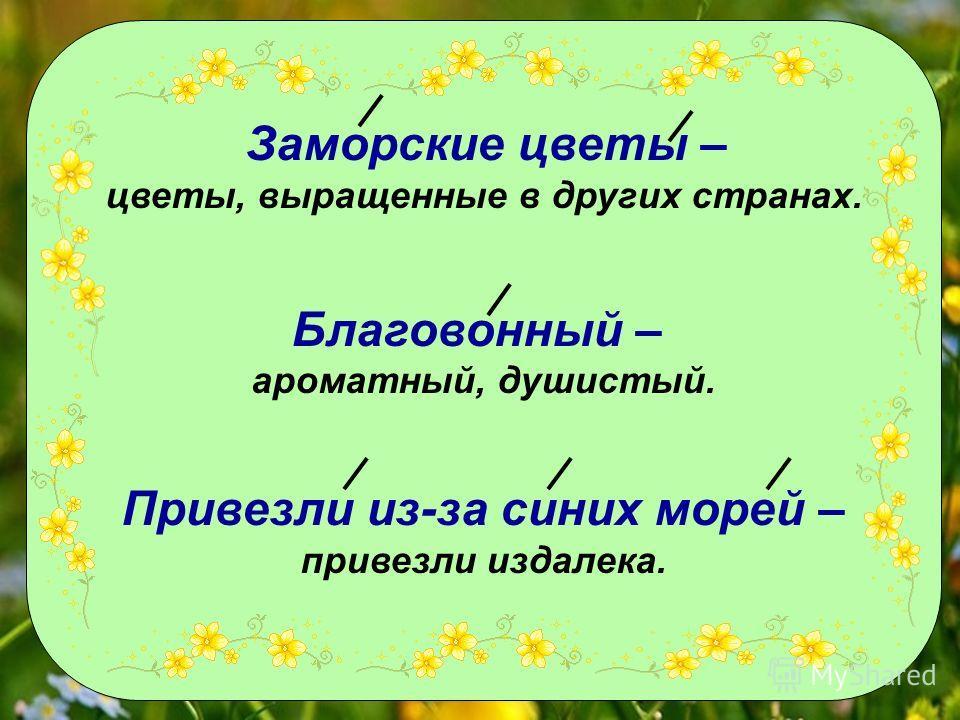Заморские цветы – цветы, выращенные в других странах. Благовонный – ароматный, душистый. Привезли из-за синих морей – привезли издалека.