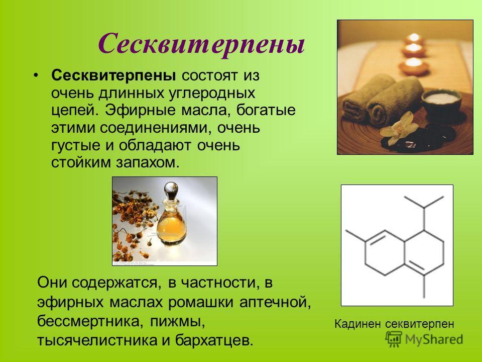 Сесквитерпены Сесквитерпены состоят из очень длинных углеродных цепей. Эфирные масла, богатые этими соединениями, очень густые и обладают очень стойким запахом. Они содержатся, в частности, в эфирных маслах ромашки аптечной, бессмертника, пижмы, тыся