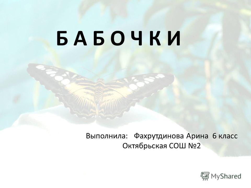 Выполнила: Фахрутдинова Арина 6 класс Октябрьская СОШ 2 Б А Б О Ч К И