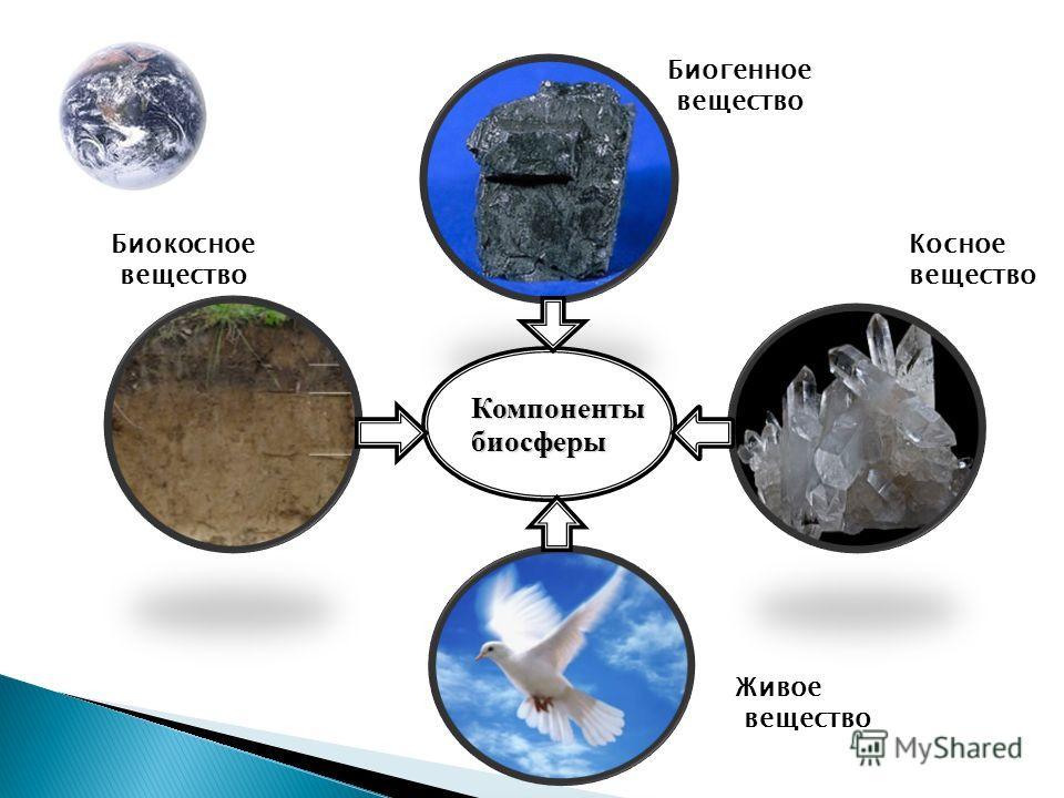 Компонентыбиосферы Биокосное вещество Косное вещество Биогенное вещество Живое вещество