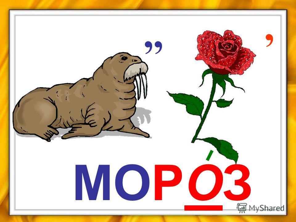 ,,, МОРОЗ