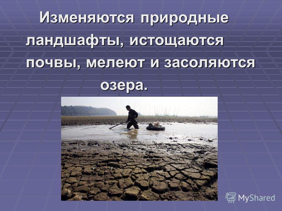 Изменяются природные Изменяются природные ландшафты, истощаются ландшафты, истощаются почвы, мелеют и засоляются почвы, мелеют и засоляются озера. озера.