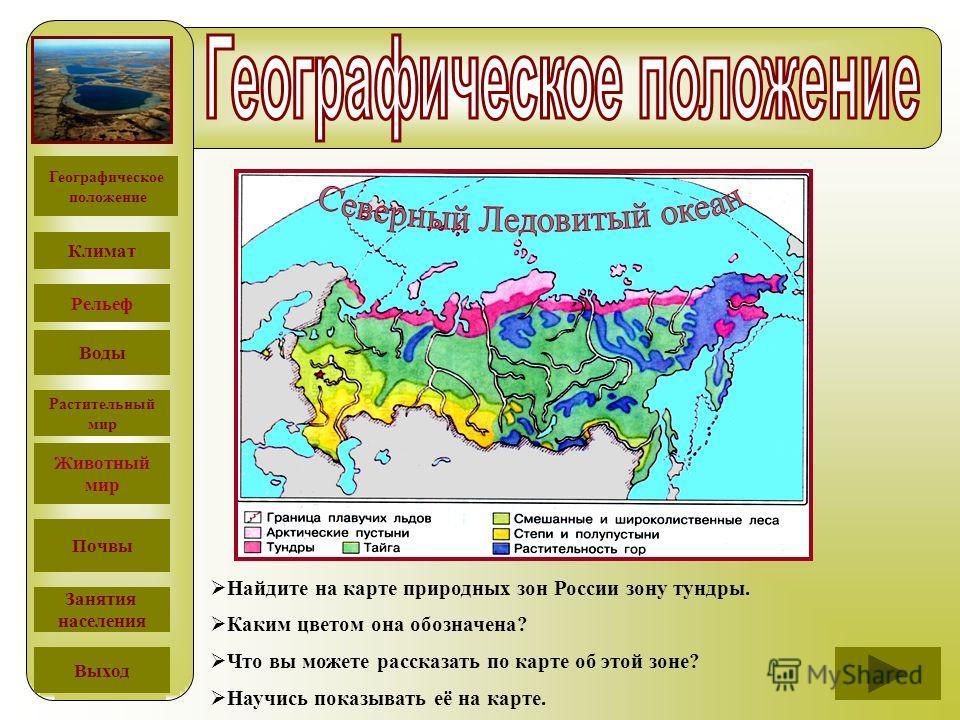Найдите на карте природных зон России зону тундры. Каким цветом она обозначена? Что вы можете рассказать по карте об этой зоне? Научись показывать её на карте. Географическое положение Климат Рельеф Воды Растительный мир Животный мир Почвы Занятия на