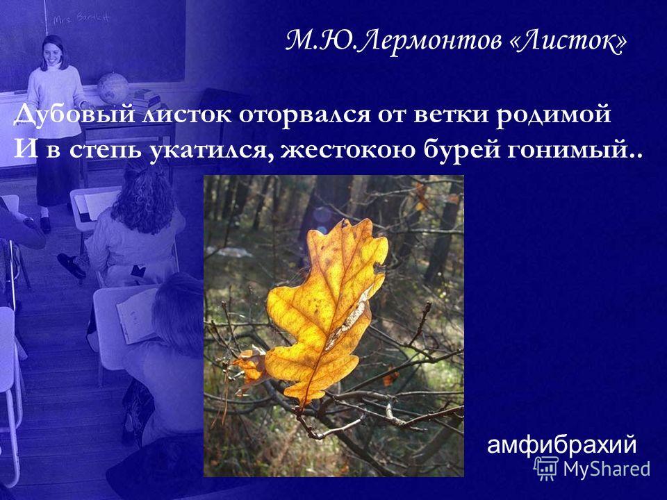 М.Ю.Лермонтов «Листок» Дубовый листок оторвался от ветки родимой И в степь укатился, жестокою бурей гонимый.. амфибрахий