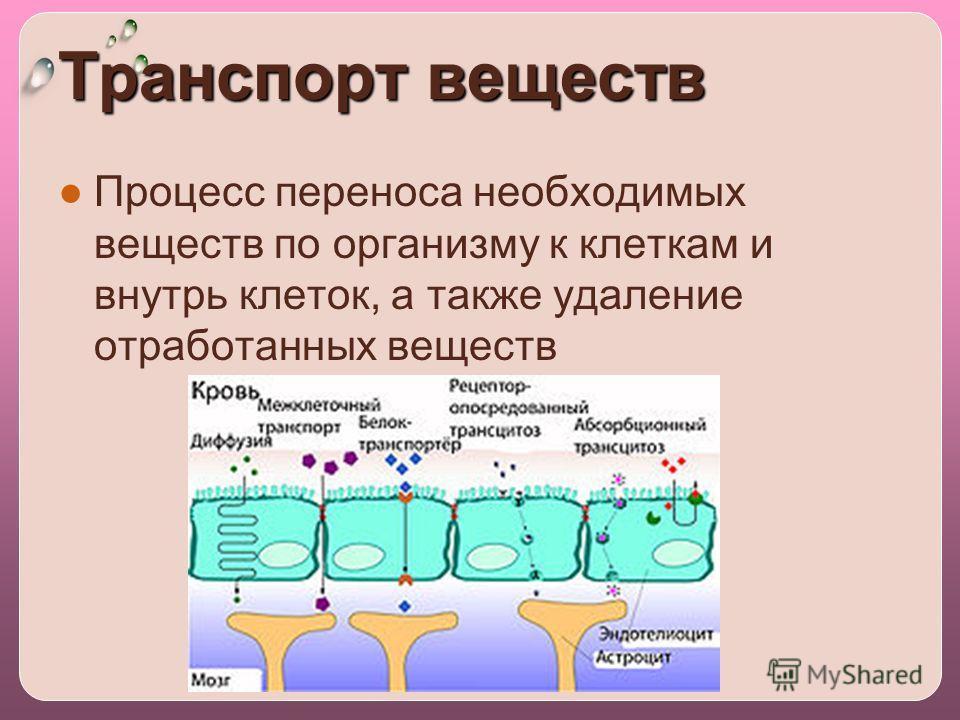 Транспорт веществ Процесс переноса необходимых веществ по организму к клеткам и внутрь клеток, а также удаление отработанных веществ