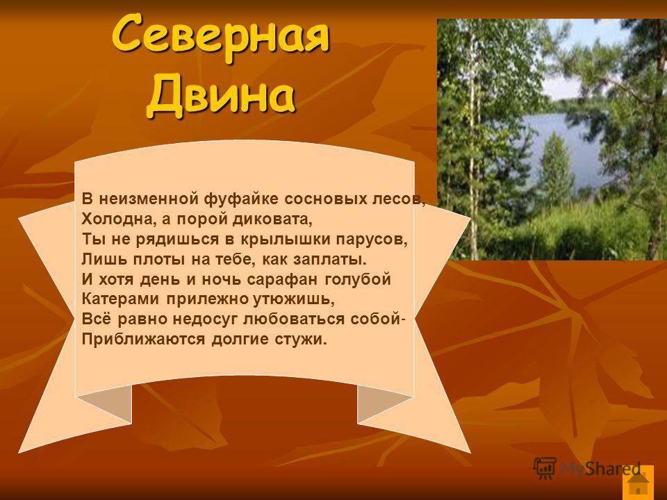 Северная Двина В неизменной фуфайке сосновых лесов, Холодна, а порой диковата, Ты не рядишься в крылышки парусов, Лишь плоты на тебе, как заплаты. И хотя день и ночь сарафан голубой Катерами прилежно утюжишь, Всё равно недосуг любоваться собой - Приб