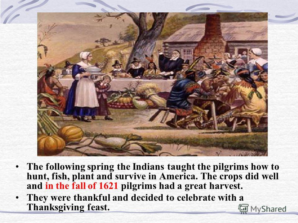 The following spring the Indians taught the pilgrims how to hunt, fish, plant and survive in America. The crops did well and in the fall of 1621 pilgrims had a great harvest. They were thankful and decided to celebrate with a Thanksgiving feast.