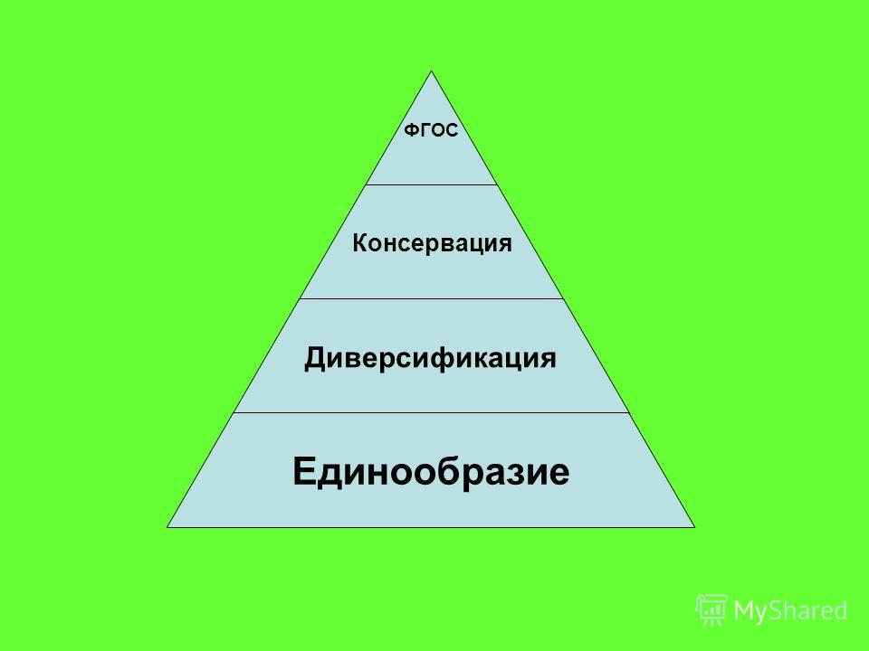 ФГОС Консервация Диверсификация Единообразие