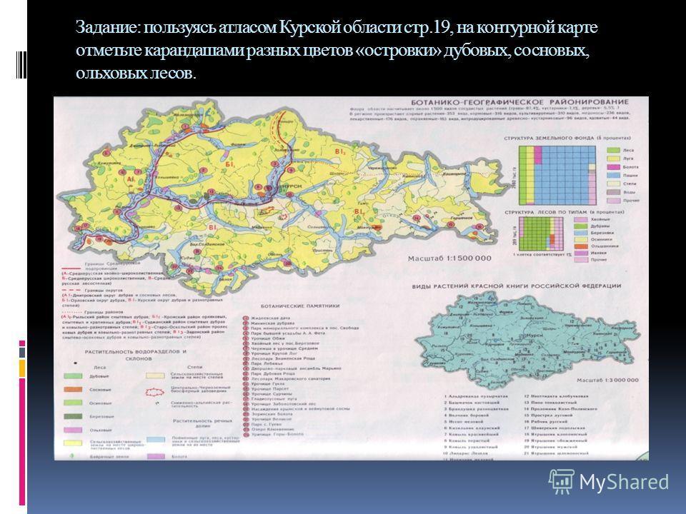 Задание: пользуясь атласом Курской области стр.19, на контурной карте отметьте карандашами разных цветов «островки» дубовых, сосновых, ольховых лесов.