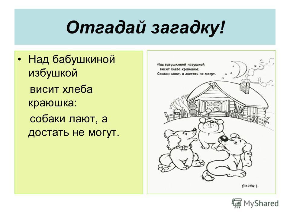 Отгадай загадку! Над бабушкиной избушкой висит хлеба краюшка: собаки лают, а достать не могут.