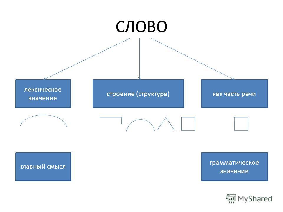 СЛОВО лексическое значение строение (структура)как часть речи главный смысл грамматическое значение