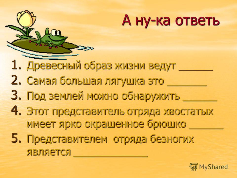А ну-ка ответь 1. Древесный образ жизни ведут ______ 2. Самая большая лягушка это _______ 3. Под землей можно обнаружить ______ 4. Этот представитель отряда хвостатых имеет ярко окрашенное брюшко ______ 5. Представителем отряда безногих является ____