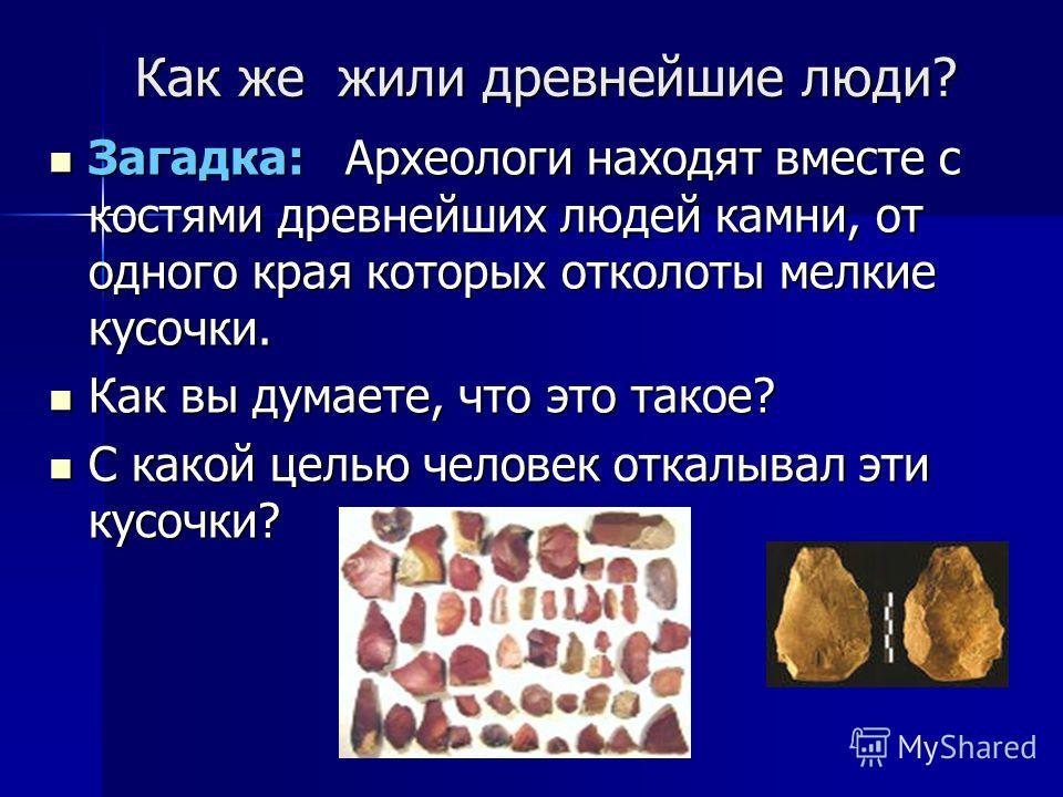 Как же жили древнейшие люди? Загадка: А Археологи находят вместе с костями древнейших людей камни, от одного края которых отколоты мелкие кусочки. Как вы думаете, что это такое? С какой целью человек откалывал эти кусочки?