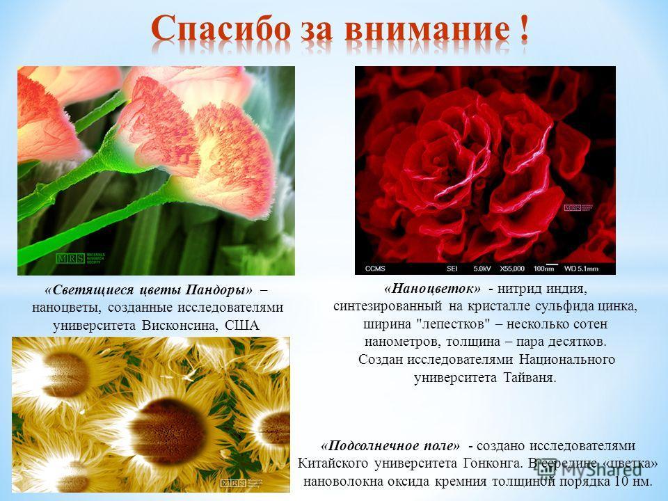 «Светящиеся цветы Пандоры» – наноцветы, созданные исследователями университета Висконсина, США «Подсолнечное поле» - создано исследователями Китайского университета Гонконга. В середине «цветка» нановолокна оксида кремния толщиной порядка 10 нм. «Нан