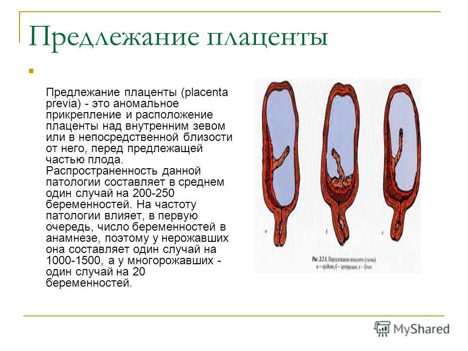 Предлежание плаценты Предлежание плаценты (placenta previa) - это аномальное прикрепление и расположение плаценты над внутренним зевом или в непосредственной близости от него, перед предлежащей частью плода. Распространенность данной патологии состав