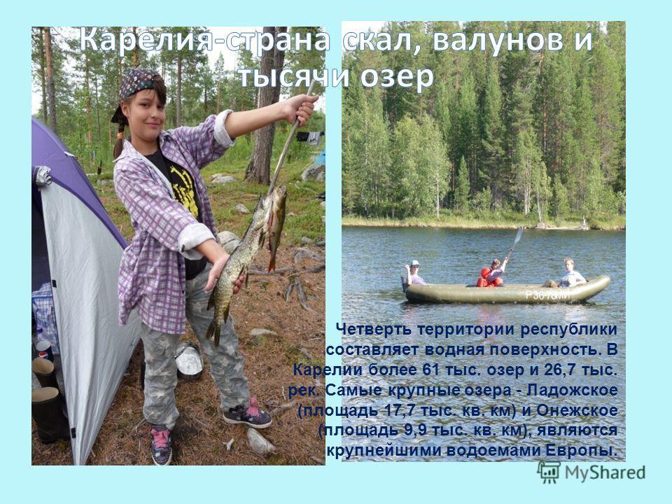 Четверть территории республики составляет водная поверхность. В Карелии более 61 тыс. озер и 26,7 тыс. рек. Самые крупные озера - Ладожское (площадь 17,7 тыс. кв. км) и Онежское (площадь 9,9 тыс. кв. км), являются крупнейшими водоемами Европы.