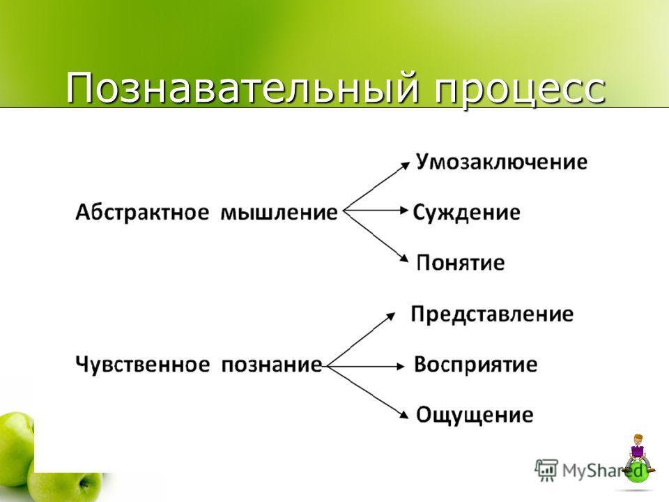 Познавательный процесс