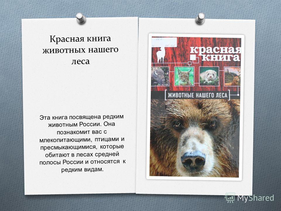Красная книга животных нашего леса Эта книга посвящена редким животным России. Она познакомит вас с млекопитающими, птицами и пресмыкающимися, которые обитают в лесах средней полосы России и относятся к редким видам.