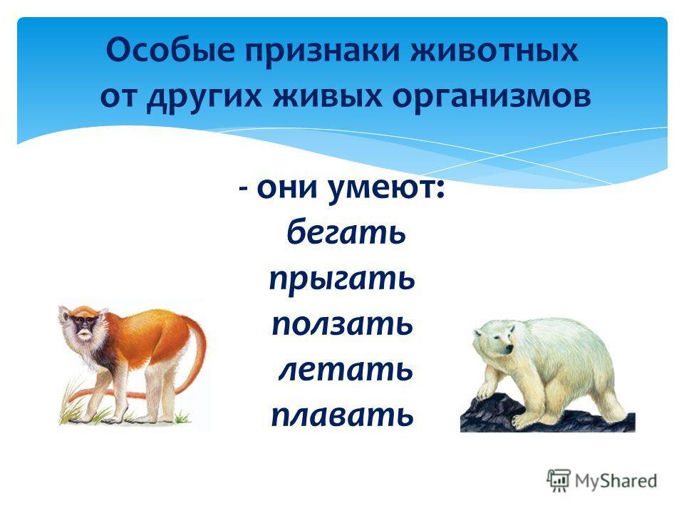 Особые признаки животных от других живых организмов - они умеют: бегать прыгать ползать летать плавать