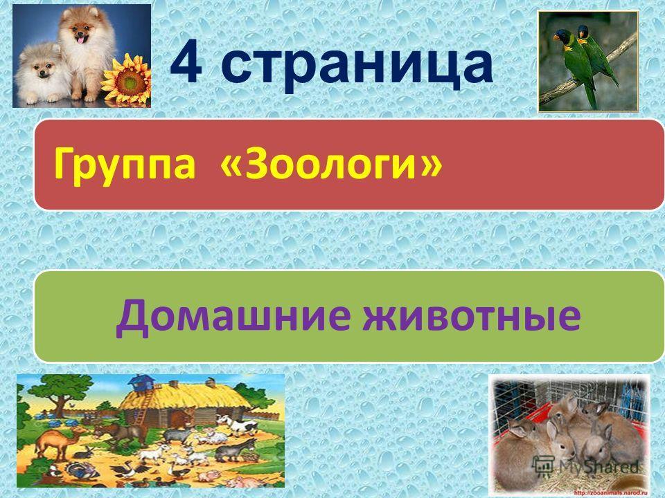 4 страница Группа «Зоологи»Домашние животные