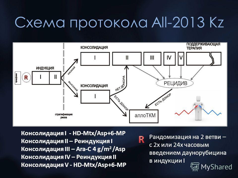 Схема протокола All-2013 Kz Консолидация I - HD-Mtx/Asp+6-MP Консолидация II – Реиндукция I Консолидация III – Ara-C 4 g/m 2 /Asp Консолидация IV – Реиндукция II Консолидация V - HD-Mtx/Asp+6-MP Рандомизация на 2 ветви – с 2х или 24х часовым введение