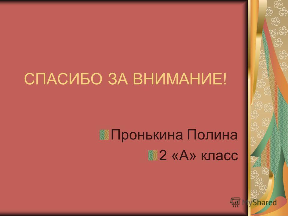 СПАСИБО ЗА ВНИМАНИЕ! Пронькина Полина 2 «А» класс