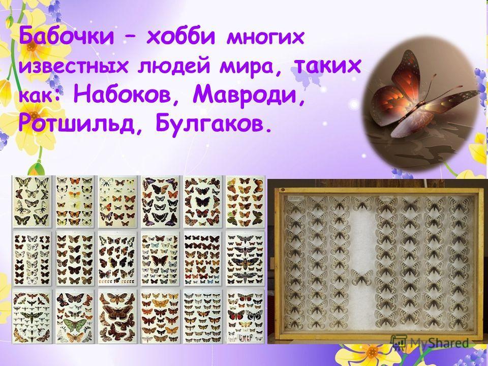 Бабочки – хобби многих известных людей мира, таких как : Набоков, Мавроди, Ротшильд, Булгаков.