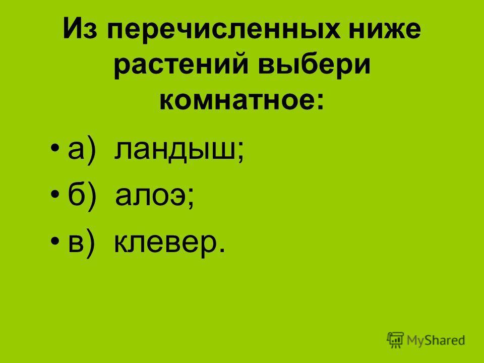 Из перечисленных ниже растений выбери комнатное: а) ландыш; б) алоэ; в) клевер.