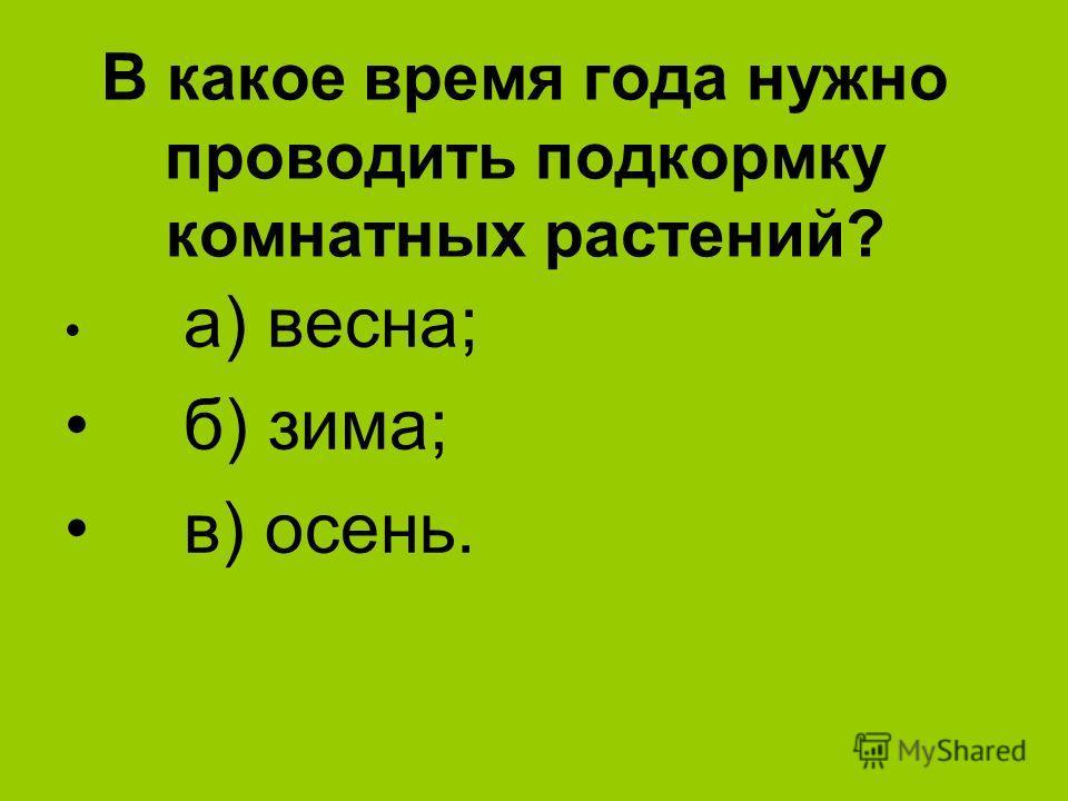В какое время года нужно проводить подкормку комнатных растений? а) весна; б) зима; в) осень.
