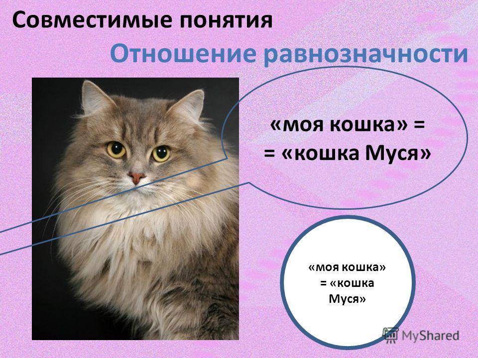 Совместимые понятия Отношение равнозначности «моя кошка» = = «кошка Муся» «моя кошка» = «кошка Муся»