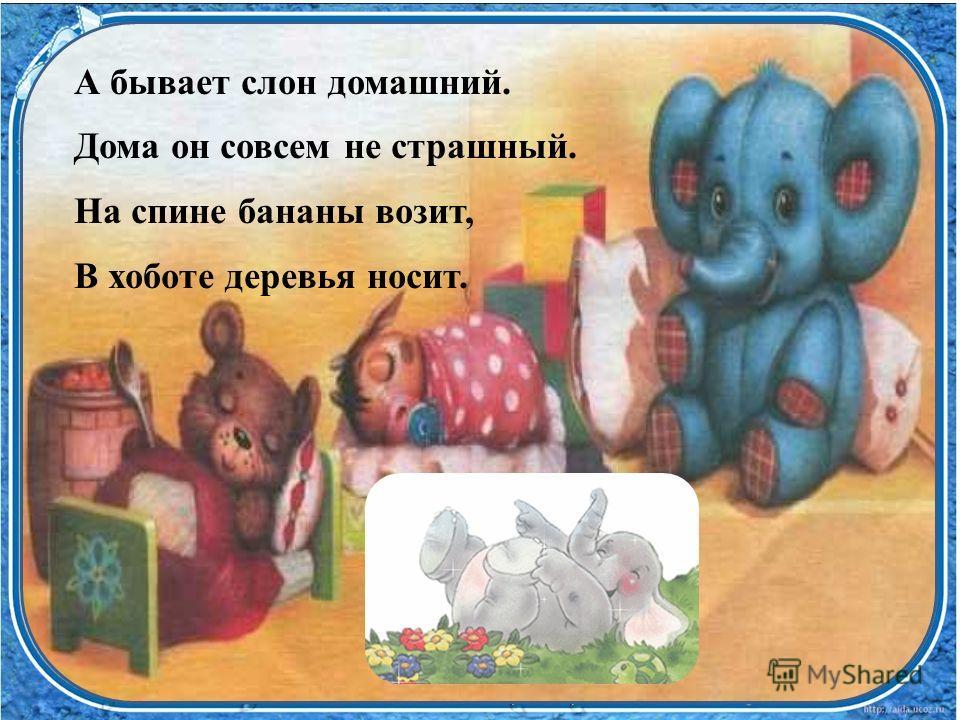 А бывает слон домашний. Дома он совсем не страшный. На спине бананы возит, В хоботе деревья носит.