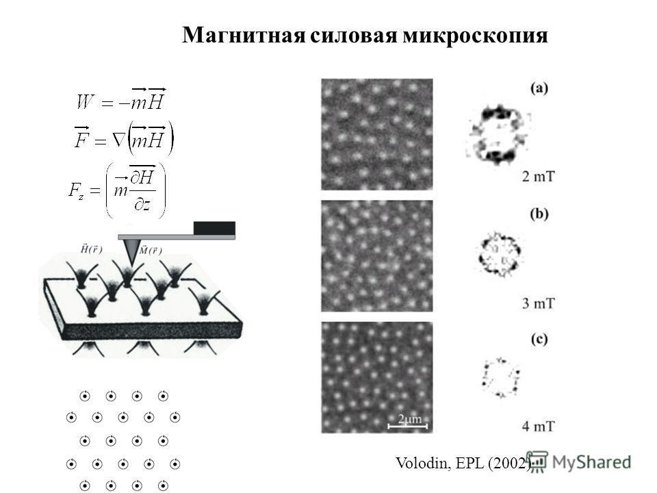 Магнитная силовая микроскопия Volodin, EPL (2002)
