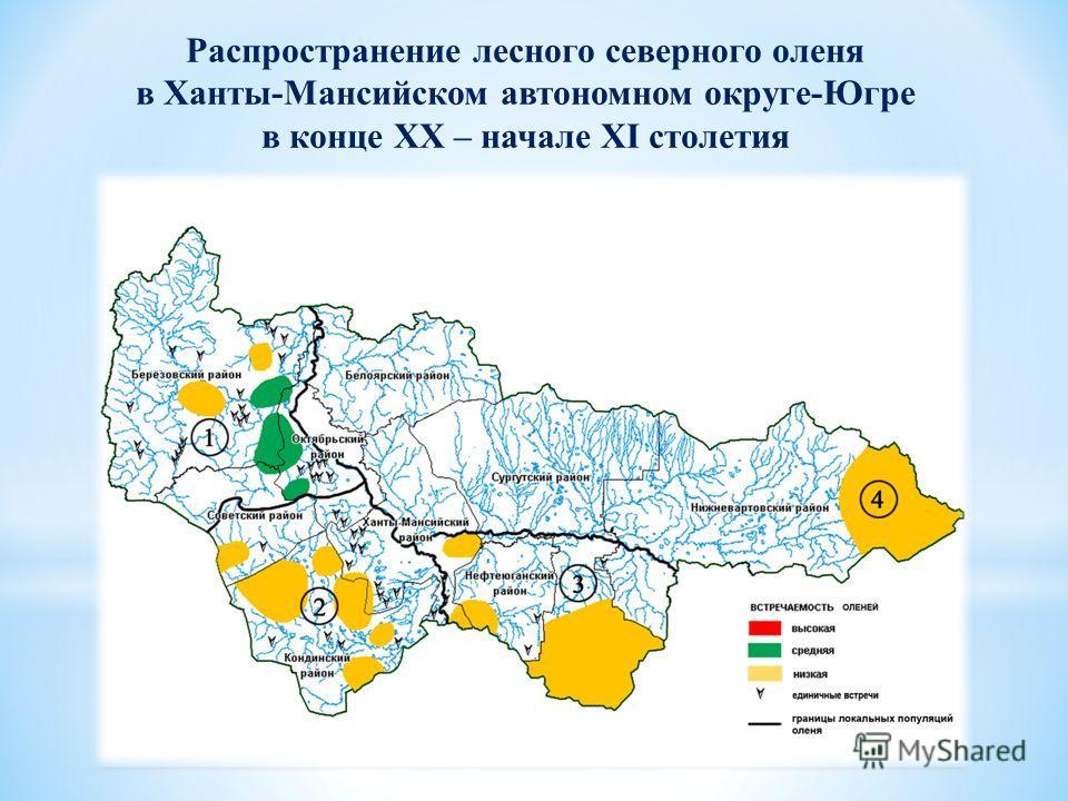 Распространение лесного северного оленя в Ханты-Мансийском автономном округе-Югре в конце XX – начале XΙ столетия