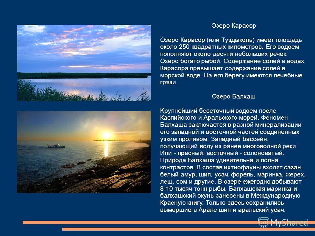 Озеро Карасор Озеро Карасор (или Туздыколь) имеет площадь около 250 квадратных километров. Его водоем пополняют около десяти небольших речек. Озеро богато рыбой. Содержание солей в водах Карасора превышает содержание солей в морской воде. На его бере