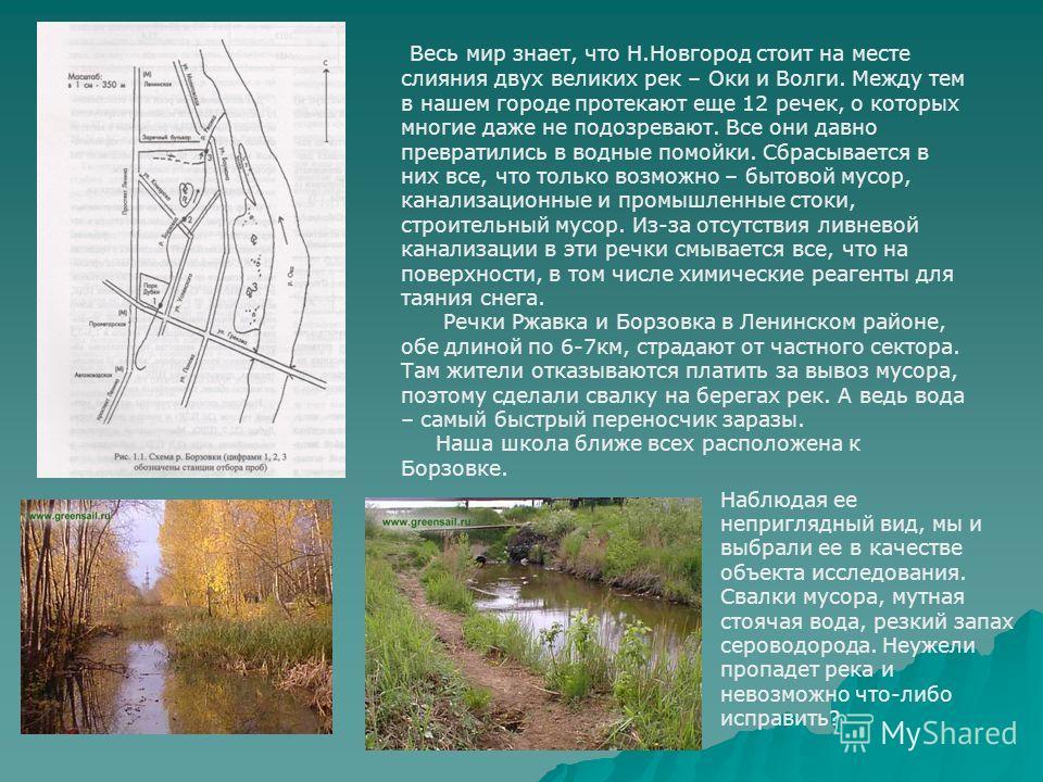 Весь мир знает, что Н.Новгород стоит на месте слияния двух великих рек – Оки и Волги. Между тем в нашем городе протекают еще 12 речек, о которых многие даже не подозревают. Все они давно превратились в водные помойки. Сбрасывается в них все, что толь