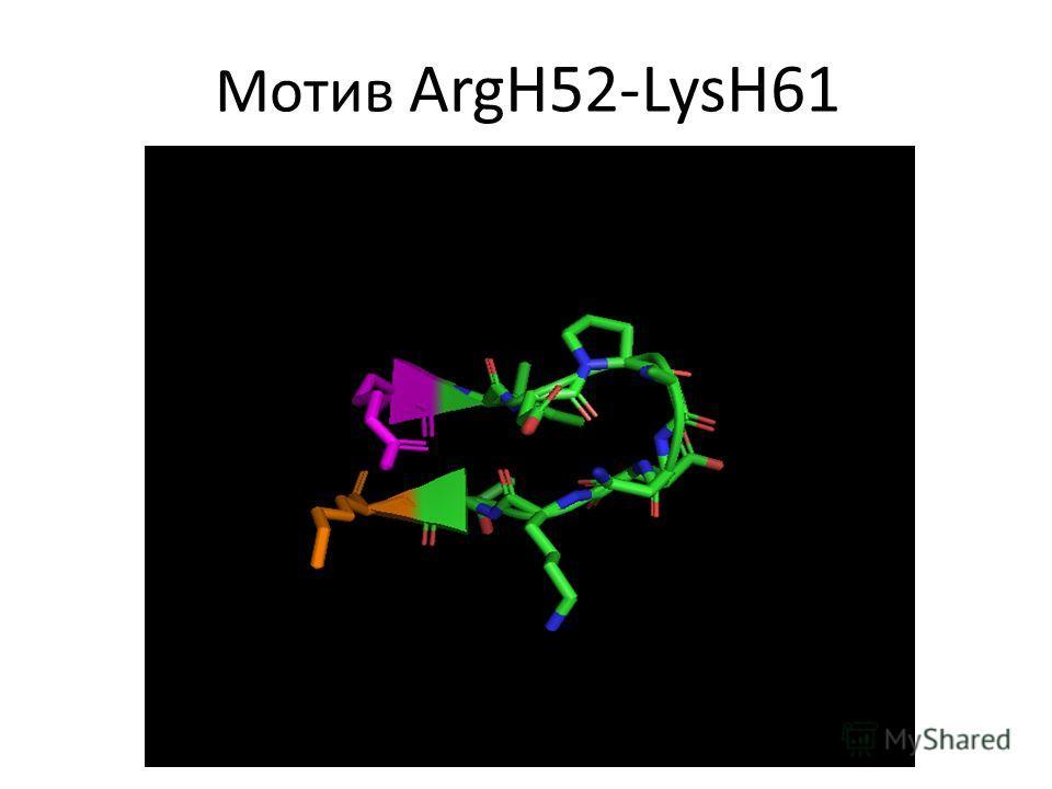 Мотив ArgH52-LysH61