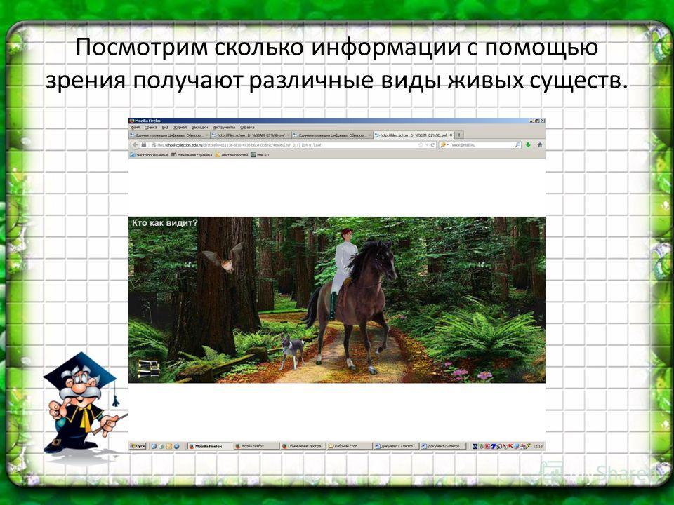 Посмотрим сколько информации с помощью зрения получают различные виды живых существ.
