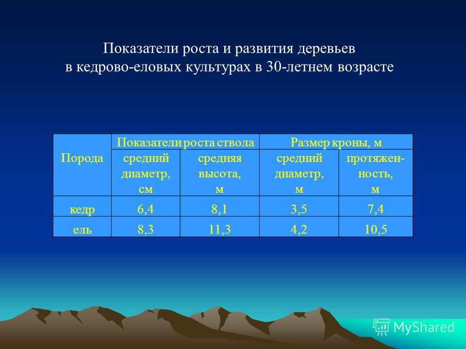 Показатели роста и развития деревьев в кедрово-еловых культурах в 30-летнем возрасте Порода Показатели роста стволаРазмер кроны, м средний диаметр, см средняя высота, м средний диаметр, м протяжен- ность, м кедр6,48,13,57,4 ель8,311,34,210,5