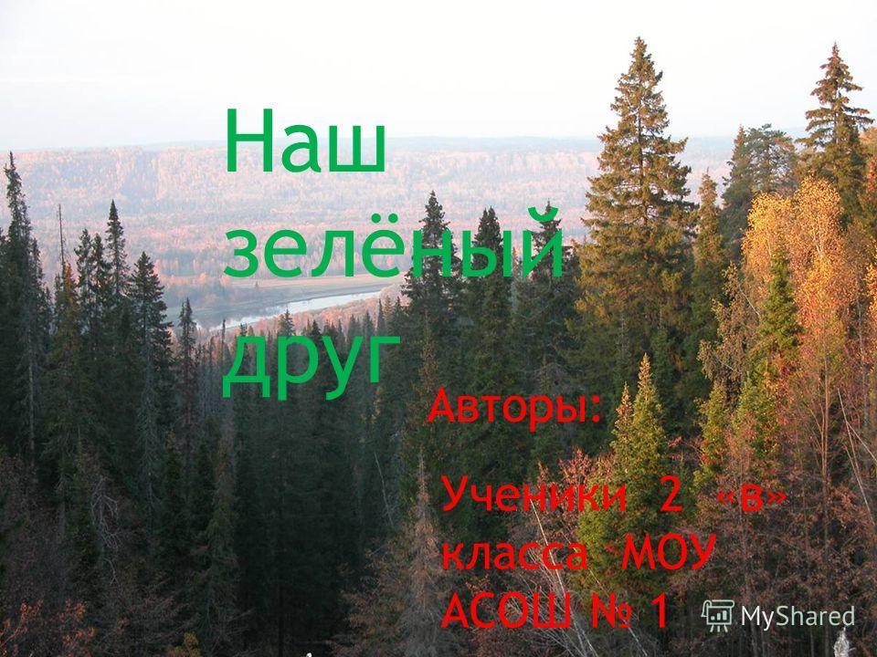 Наш зелёный друг Ученики 2 «в» класса МОУ АСОШ 1 Авторы: