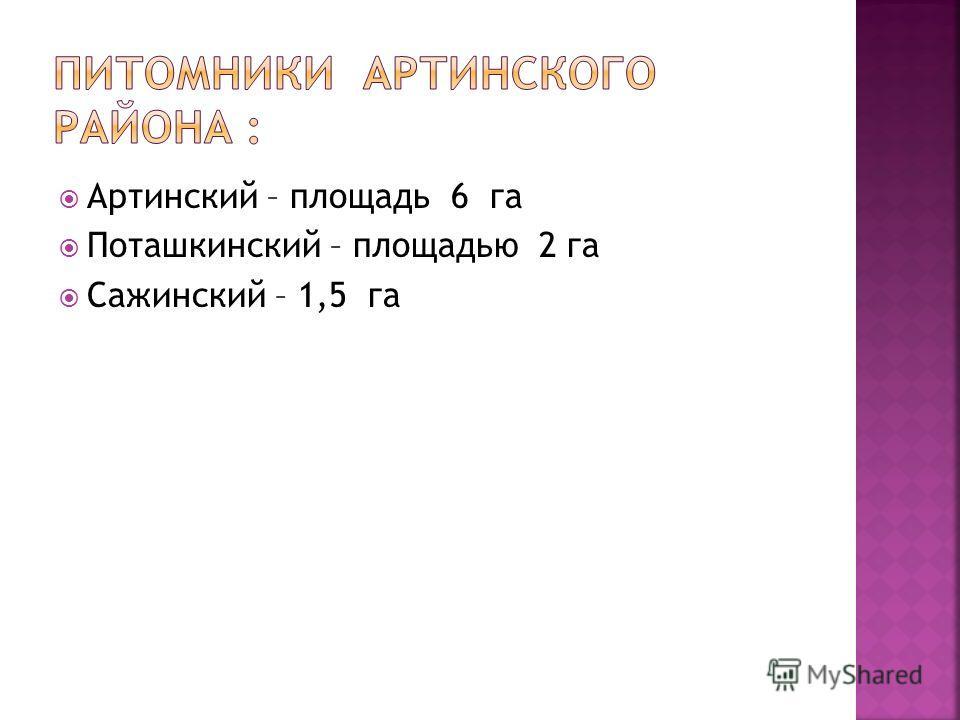 Артинский – площадь 6 га Поташкинский – площадью 2 га Сажинский – 1,5 га