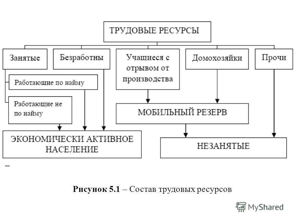 Рисунок 5.1 – Состав трудовых ресурсов