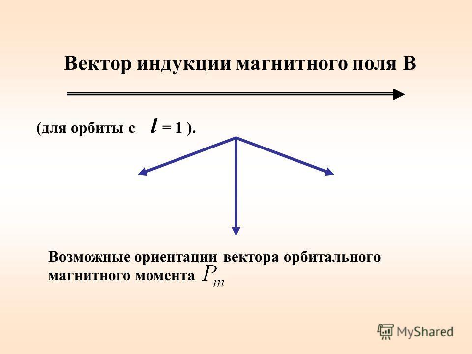 Вектор индукции магнитного поля В Возможные ориентации вектора орбитального магнитного момента (для орбиты с l = 1 ).