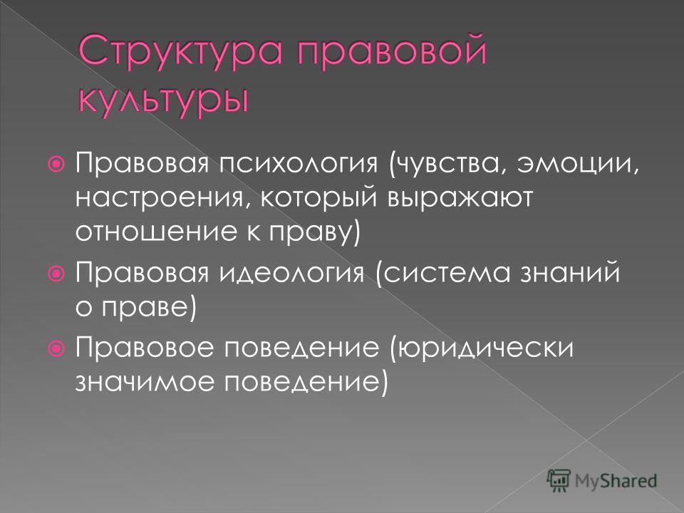 Правовая психология (чувства, эмоции, настроения, который выражают отношение к праву) Правовая идеология (система знаний о праве) Правовое поведение (юридически значимое поведение)