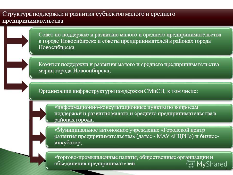 Совет по поддержке и развитию малого и среднего предпринимательства в городе Новосибирске и советы предпринимателей в районах города Новосибирска Комитет поддержки и развития малого и среднего предпринимательства мэрии города Новосибирска; Структура