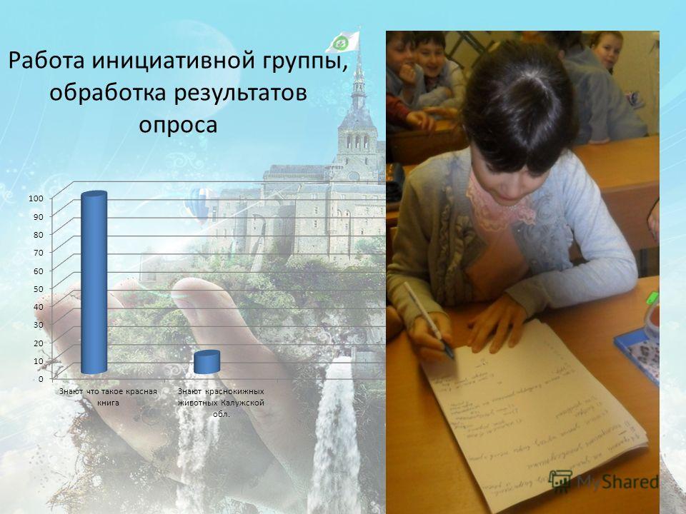 Работа инициативной группы, обработка результатов опроса
