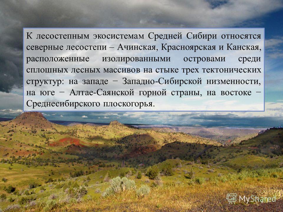 К лесостепным экосистемам Средней Сибири относятся северные лесостепи – Ачинская, Красноярская и Канская, расположенные изолированными островами среди сплошных лесных массивов на стыке трех тектонических структур: на западе Западно-Сибирской низменно