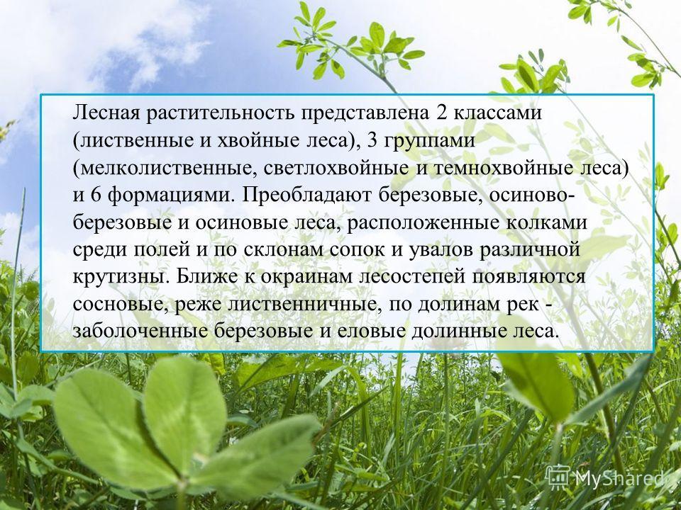 Лесная растительность представлена 2 классами (лиственные и хвойные леса), 3 группами (мелколиственные, светлохвойные и темнохвойные леса) и 6 формациями. Преобладают березовые, осиново- березовые и осиновые леса, расположенные колками среди полей и