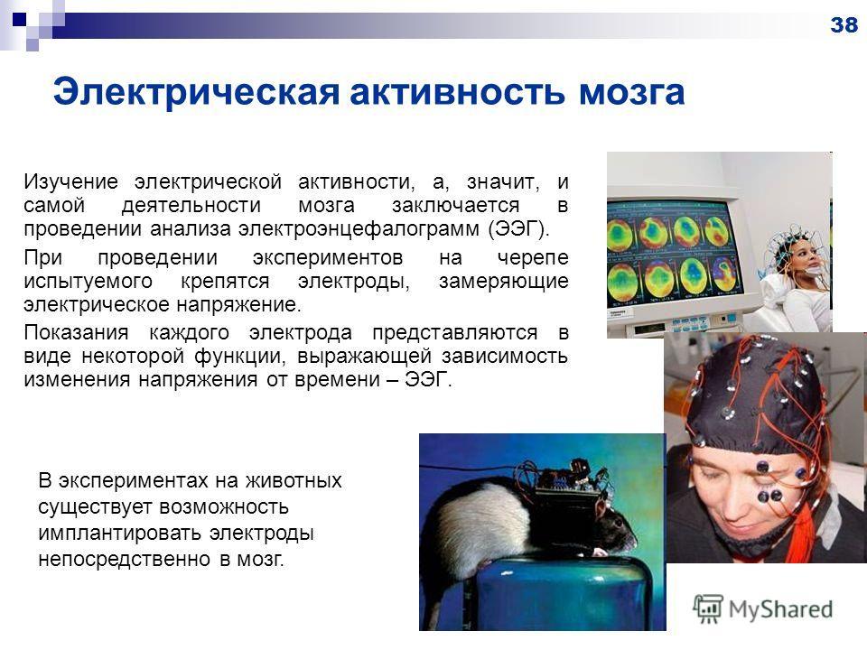 Электрическая активность мозга Изучение электрической активности, а, значит, и самой деятельности мозга заключается в проведении анализа электроэнцефалограмм (ЭЭГ). При проведении экспериментов на черепе испытуемого крепятся электроды, замеряющие эле