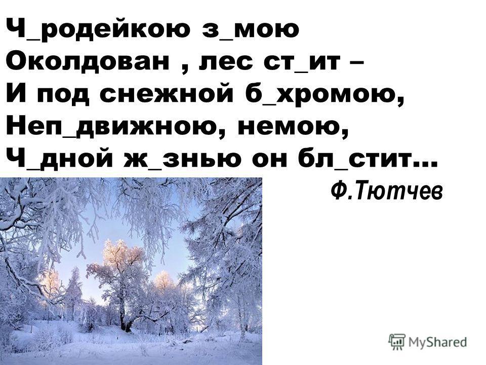Ч_родейкою з_мою Околдован, лес ст_ит – И под снежной б_хромою, Неп_движною, немою, Ч_дной ж_знью он бл_стит… Ф.Тютчев