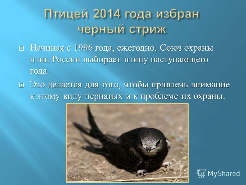 Начиная с 1996 года, ежегодно, Союз охраны птиц России выбирает птицу наступающего года. Начиная с 1996 года, ежегодно, Союз охраны птиц России выбирает птицу наступающего года. Это делается для того, чтобы привлечь внимание к этому виду пернатых и к